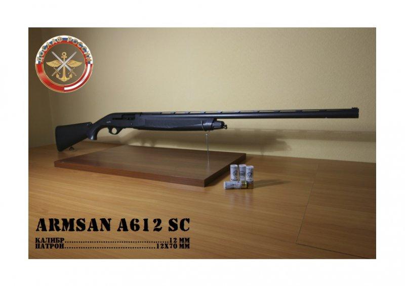 13ARMSANA612SC